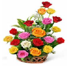 pink roses basket delivery Hyderabad
