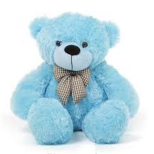 send teddy  to Hyderabad India